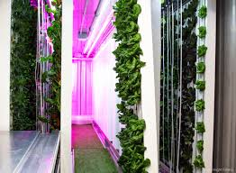 this innovative hydroponic system for sale uses a shipping