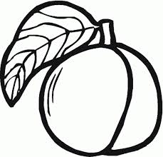 peach coloring pages peach peachcoloringpages
