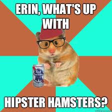 Erin Meme - hipster hamster memes quickmeme