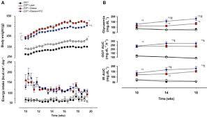 myocardial titin hypophosphorylation importantly contributes to
