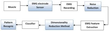 sensors free full text surface electromyography signal