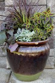 Ideas For Container Gardens Mavis Garden Ideas For Summer Container Gardening One