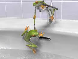 Tropical Bathroom Decor by Tropical Frog Bathroom Decor Accesories U2014 Office And Bedroom