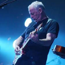 David Gilmour Comfortably Numb The Great Gig In The Brighton Centre Pink Floyd U0027s David Gilmour