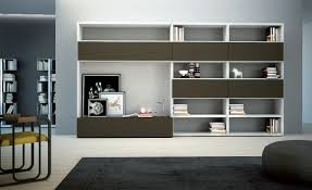 Wall Cabinets For Living Room Wall Storage Cabinets Living Room Home Decorating Interior