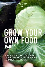 Growing Your Own Vegetable Garden by Grow Your Own Food A Guide To Everything You Need To Know To