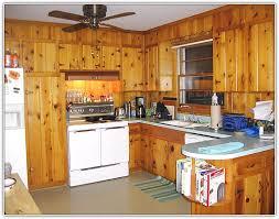 Knotty Kitchen Cabinets Refinishing Knotty Pine Kitchen Cabinets Home Design Ideas