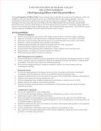 qualification for resume financial analyst resume sample for a