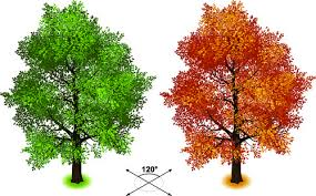 vector creative book tree free vector 19 241 free vector