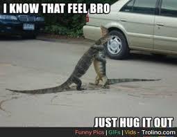 Rejection Meme - my feels on my meme rejection trolino