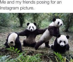 best friend memes popsugar tech