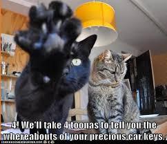 Car Keys Meme - lolcats car keys lol at funny cat memes funny cat pictures