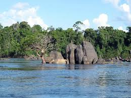 rock garden picture of essequibo river guyana tripadvisor