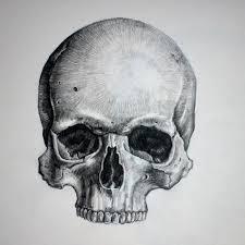 Amazing Skull - best 25 skull drawings ideas on skull tattoos skull