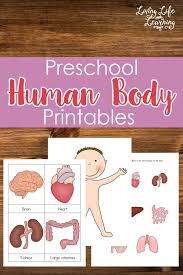 human body printables for kids