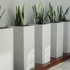 terrarium design amazing square white planter large white ceramic