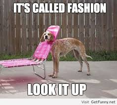 2014 Funny Memes - fashion 2014 dog funny pictures funny quotes funny memes funny