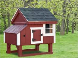 wooden chicken coops for sale customizable options penn dutch