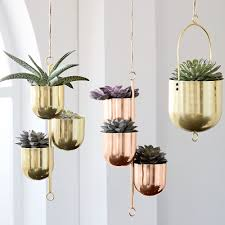 these cactus home decor buys are simply succulent