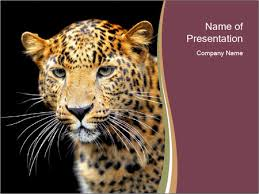 safari in africa powerpoint template u0026 backgrounds id 0000067123