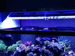 national geographic aquarium light led aquarium fixture national geographic led aquarium light for