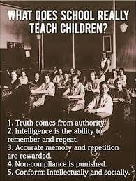 Education Memes - home education memes home educating