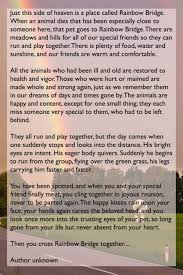 man wrote à heartbreaking letter for his dog to say goodbye 5