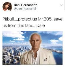 Pitbull Meme Dale - dani hernandez pitbullprotect us mr305 save us from this fate dale