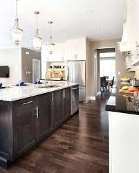dark kitchen cabinets with dark wood floors pictures dark kitchen cabinets images pricechex info