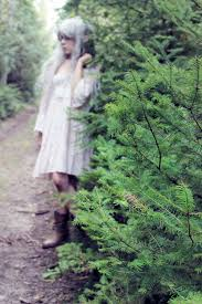 Seeking You Just Lost Wings Getting Lost In The Woods A Story About Seeking Shelter From The