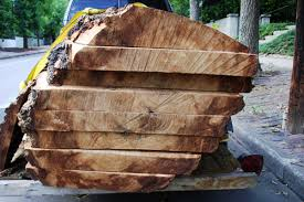slab wood wood slabs denver wood slabs