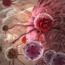 the effects of cell cycle deviation on cancer development
