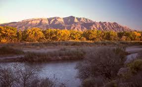 Landscaping Albuquerque Nm by The Rio Grande Rift Albuquerque Basin