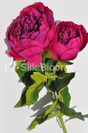 Artificial Peonies Shop Artificial Peony Single Stem Flower In Pink Double Headed
