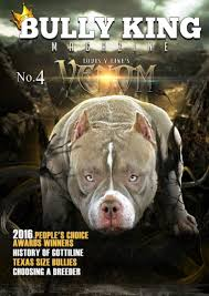 american pitbull terrier traits history of the american pit bull terrier u0026 the evolution of the