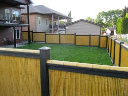 Architecture Front Yard Design With Diy Green Bamboo Fence And