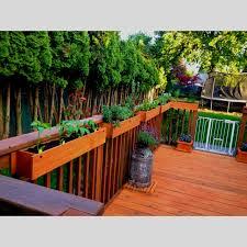 deck herb garden herb pepper garden on the deck garden