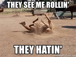 they see me rollin they hatin meme generator see best of the funny
