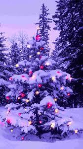 pink light 2014 christmas tree iphone 6 plus wallpaper nature