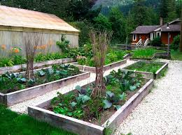 Cottage Garden Design Ideas by Vegetable Garden Design Ideas P The Garden Inspirations