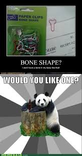 Pick Up Line Panda Meme - memebase bad pickup line panda all your memes in our base