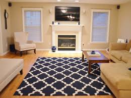 Pink Rug Target Important Photos Of Red Shag Area Rug Top Contemporary Blue Rug