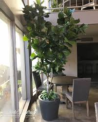 artificial plants plantscaping silk flowers plants trees