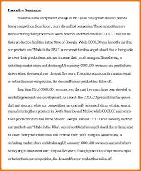 sample executive reports executive summary template 22 30