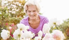 How To Care For Your by How To Care For Your Roses This Autumn Garden Life U0026 Style