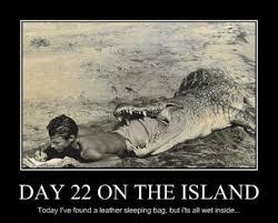 Crocodile Meme - alligator sleeping bag meme lovevulture