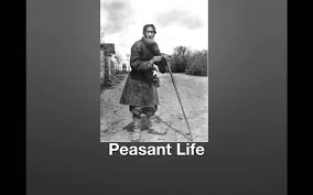 long term causes of the russian revolution peasants youtube