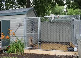 dog kennel chicken coop 22 with dog kennel chicken coop amhtxy com