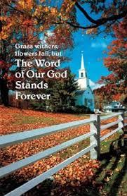 thanksgiving bulletins thanksgiving fall bulletins sets church