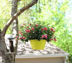Diy Hanging Planters by Your Home With Greenery With These 20 Diy Hanging Planters